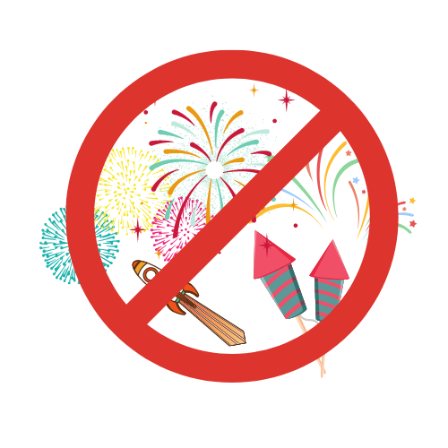 Feuerwerk im Garten – erlaubt oder verboten?