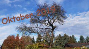 Der Oktober - Impressionen 2019 in der Morgensonne