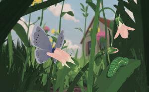 Online Workshop Schmetterlingswiesen