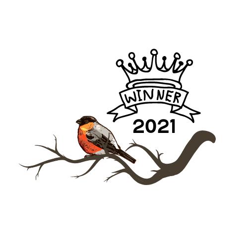 Rotkehlchen ist Vogel des Jahres 2021